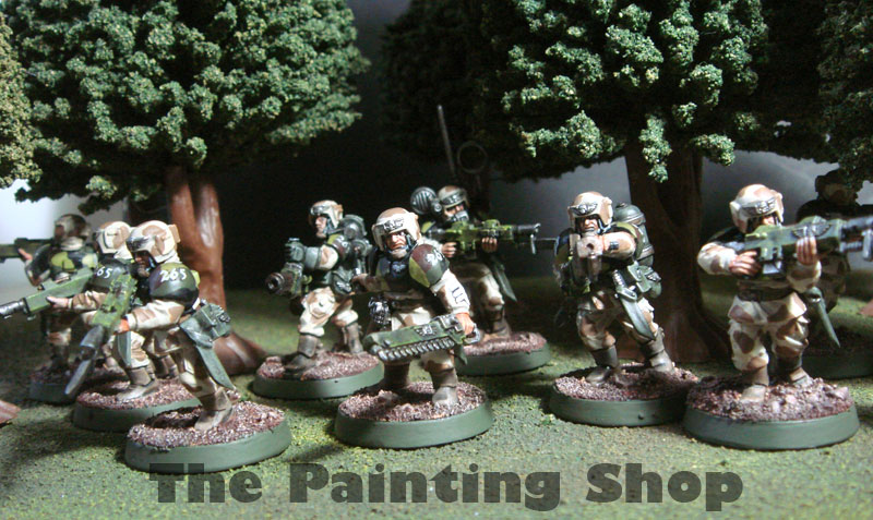 Imperial Guards Cadian